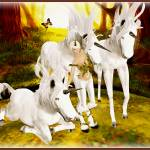 """The Faun and the Unicorns"" by natenchanted"