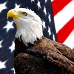 """842767504_eagle flag"" by NaturalPhotoz"