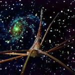 """Arrow Crab and Spiral Galaxy"" by Synergies"