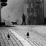 """Streetlife"" by Leffe"