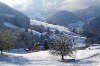 Swiss Snow Scene