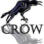 """Crow"" by maryostudio"