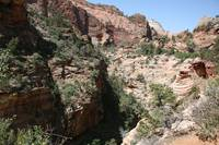 Zion National Park 2
