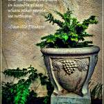 """Pissarro Quote"" by jbjoani2"