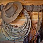"""Hats and Chaps"" by Inge-Johnsson"