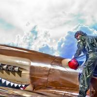 Curtis P-40 Warhawk Art Prints & Posters by Steve Benefiel