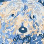 """Poodle"" by RebeccaPalatnik"
