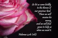 Hebrews 4:16 passion rose