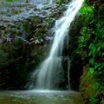 """""""Maunawili Waterfall"""" by lifestillshawaii"""