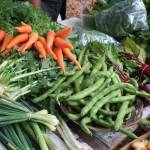 """""""Organic Veggies"""" by Saphira"""