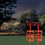 """Zen Garden"" by Acedarter"