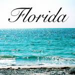 """Florida"" by ideaproductions"