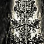 """Rorschach Test 3"" by ChrisRubey"