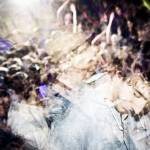 """Rebirth Ad Infinitum"" by ChrisRubey"
