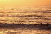 Cali Surfing