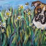 """Boxer eyes bee amongst flowers"" by artbyangie"