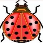 """""""LadyBug"""" by w1z111"""