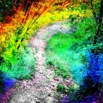 """Colorful Path"" by louisegrace"