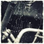 """Drops"" by anderssonochbrunk"
