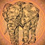 """""Elephant Spirit"" version2 - surreal totem animal"" by LeahMcNeir"