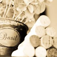 Wine Corks and Basil Plant