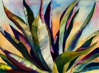 Electric Agave