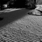 """Rock Garden"" by patenaudephotography"