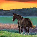 """""""Horse"""" by susanvansant"""