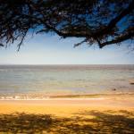 """""""Sunny Beach"""" by RaymondLee"""