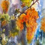 Cognac Grapes at Harvest Watercolor Ginette