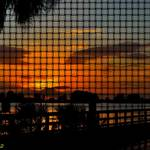 """Hudson Beach Sunset Silhouettes Weave"" by RichardJZentner"