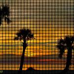 """Sunset Silhouettes Weave"" by RichardJZentner"