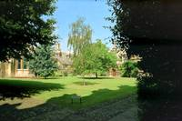 College Garden in Summer, Cambridge, England