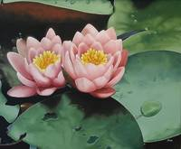 Pink lotus flowers pond painting