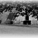 """Arkansas Barn Two"" by bettynorthcutt"