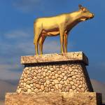 """golden calf"" by TrueVine"
