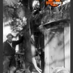 """""""Deer Hunter - Retro"""" by KStar"""