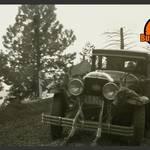 """Retro - AAA Car With Deer On Hood"" by KStar"