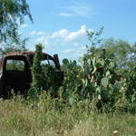 """Rustic Truck in Cactus"" by KStar"