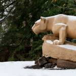 """Nittany Lion in Winter Panorama"" by williamames"