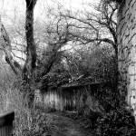 """""""Secret Path...."""" by rathompson"""