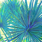 """abstract blue palms"" by pietrastone"