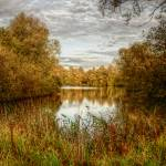 """""""Barnwell Lake"""" by InspiraImage"""