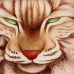 """""""Bobcat"""" by jenndelfs"""