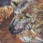 """Polar Bear"" by Antxx"