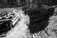 In The Trenches bw
