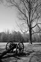 Petersburg National Battlefield bw