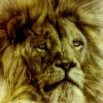 """""""Lion"""