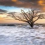 """Botany Bay Edisto Island SC Boneyard Beach Sunset"" by DAPhoto"