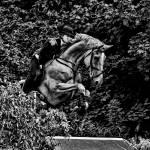 """""""Horse Jump"""" by SamSmith"""